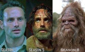 the_funniest_walking_dead_memes_inspired_by_season_5_640_04