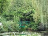 Jardin d'eau - Pont japonais